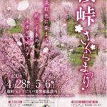 4/28~5/6 桜峠さくらまつり